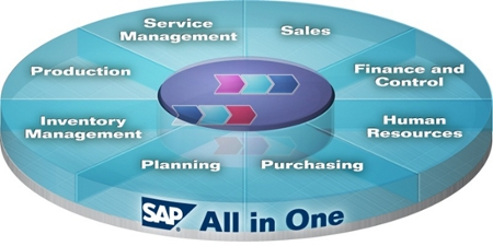 sap-all-in-one-ccsa-funciones